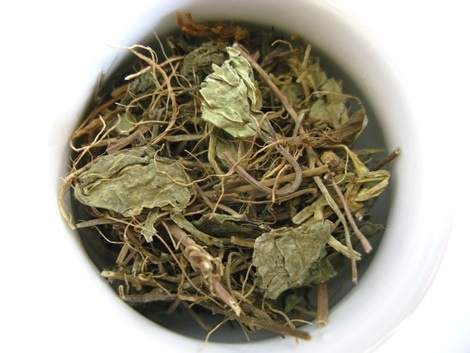 Gotu Kola Tea - The Longevity Infusion