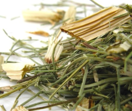 Horsetail Tea - The Repairing Tea