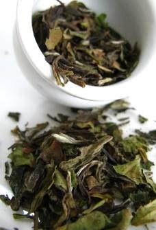 white peony tea 01