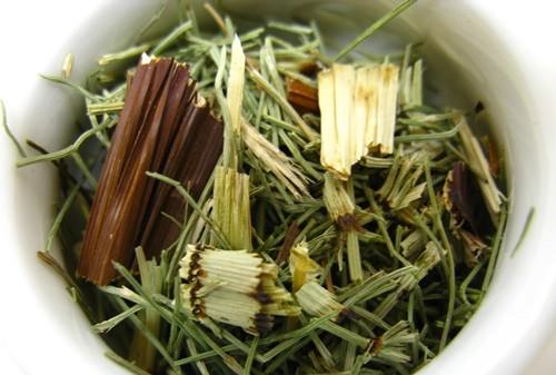 Horsetail Tea - The Repairing Tea