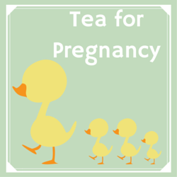 Tea for Pregnancy